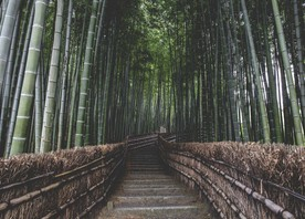 Eco-Friendly travel in Japan