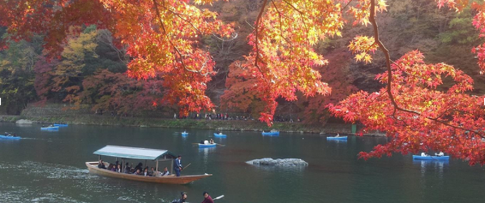 Top 5 Autumn Foliage Viewing Spots by JR Pass