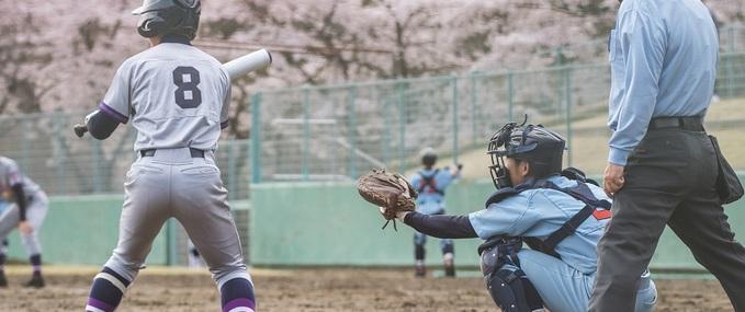 A Beginners Japan Baseball Guide