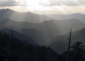 Visit Mt. Koya