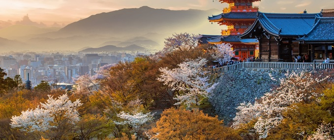 Best Buddhist Temples in Kyoto to Visit